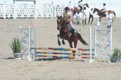 Festa do cavalo Foto2