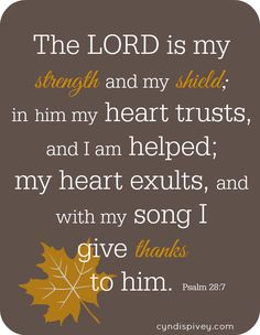 Sunday Encouragement-Thanksgiving Thoughts