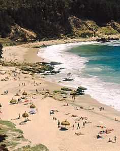 Vina del Mar, Chile? waves and wineries would be fun.