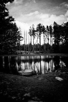 Docked black and white photograph of a rowboat among trees