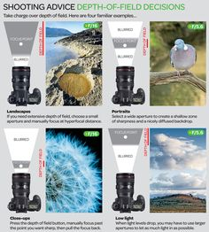 A layman's guide to depth of field: how to check and affect sharpness like a pro  #photography #photographytips