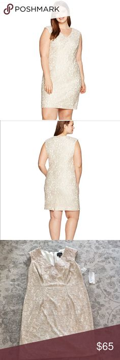 Alex Evening lace dress Brand new. Size 16W. Great for mother of the bride, weddings, or even holiday parties!! Alex Evenings Dresses