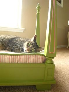 pet bed - flip an old end table over put a pillow in it, paint - call it a day