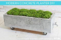 How To: Make a Modern, Trough-Style Concrete Planter
