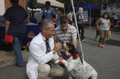 Dr. Dean Cerf feeds this Hound Mix at Ridgewood Veterinary Hospital's Adopt-A-Pet Day.