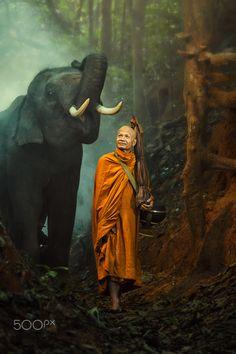 Monk walking hiking and Elephant. - Monk walking hiking with canny Elephant in forest. Buddhist Monk, Buddhist Art, Yogi Tattoo, Theravada Buddhism, Buddha Life, Amor Animal, Tibetan Art, Elephant Love, Art Challenge