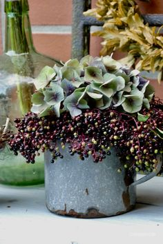 Still life with elderberries- Stillleben mit Holunderbeeren Still life with elderberries – Karin Urban – NaturalSTyle - Potted Plants Patio, Fall Planters, Container Flowers, Container Plants, Most Beautiful Gardens, Amazing Gardens, Fall Flowers, Summer Flowers, Fresh Flowers