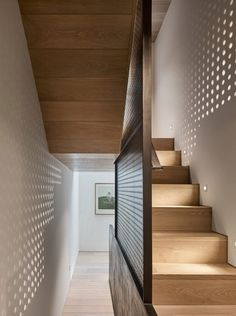 Tagged: Staircase and Wood Tread. Photo 1 of 1435 in Staircase Photos from Transparent Perforated Circles Bring Light and Movement to This London Terrace House. Browse inspirational photos of modern staircases. Georgian Terrace, Georgian Townhouse, Modern Townhouse, London Townhouse, Terraced House, Modern Staircase, Staircase Design, Staircase Metal, Interior Architecture