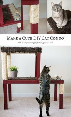 Learn how to make a cute DIY cat tree that's affordable, functional, and aesthetically pleasing. #cutecatsdiy