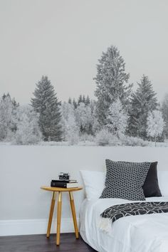 tapisserie 3D à paysage hivernal, intérieur en blanc, noir et gris