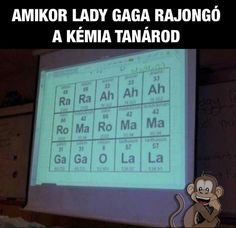 Lady Gaga a tanarom Lady Gaga, Good Jokes, Funny Jokes, Funny Images, Funny Photos, Bad Memes, Science Humor, Lol So True, Funny Thoughts