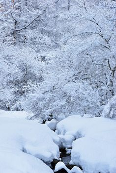 Snow in stream, Chino, Nagano, Japan