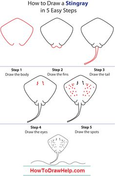 how to draw a dog step by step instructions how to draw a stingray step