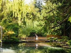 Lakeside Gardens Portland Oregon Wedding Venues 3