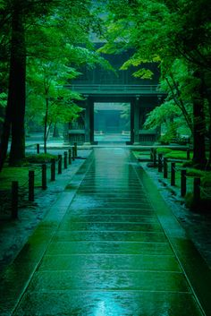 Heirin-ji temple in a rainy day, Niiza, Saitama, japan Beautiful World, Beautiful Places, Landscape Photography, Nature Photography, Travel Photography, Japan Landscape, Aesthetic Japan, Slytherin Aesthetic, Japanese Architecture