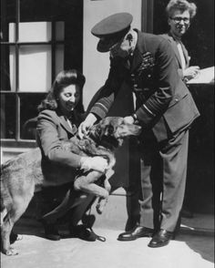 """Brian received the award in 1944 after he parachuted into Normandy with the 13th Battalion, Airborne Division, in June 1944. Brian"""" (a.k.a. """"Bing""""), was a cross-bred Alsatian, and 'a fully qualified paratroop with the requisite number of jumps', was five years old at the time of receiving his Dickin Medal"""