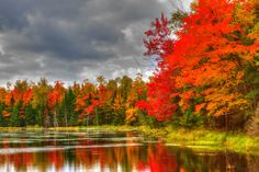 Firey Fall Color along Wisconsin's County Hwy B in Vilas County.