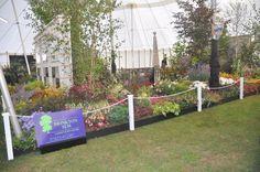 Our World War One memorial garden in 2014
