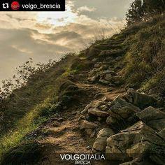 #Repost temporaneo da @volgo_brescia con @repostapp  Grazie mille per avermi selezionato!  Rocca di Manerba - Brescia  Foto di @isola_fenice  #brescia #lombardia #italia #italy  #volgobrescia #volgolombardia #volgoitalia #turism #holiday #trip #travel #italytrip #italytour #travelingram #madeinitaly #italyiloveyou #volgosocial #volgobrescia