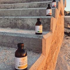 Our bottles are perfect for Kombucha on the go or to be packed for lunch for a delicious brew anytime. Kombucha, Cape Town, Be Perfect, Wine Rack, Brewing, Bottles, To Go, Leaves, Lunch