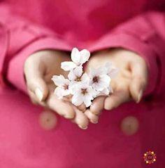 ♡☼⁀⋱‿✿★☼⁀ ♡ Deus não é uma religião. Deus é a paz no coração daqueles que O buscam.