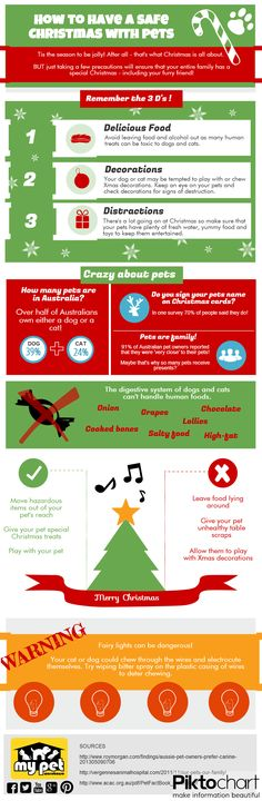 how to have a safe Christmas with dogs and cats in the home.