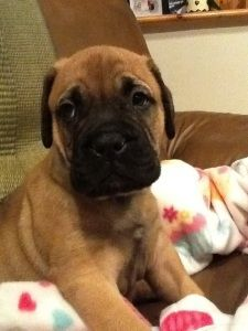 @Kimberly Callicoat - here is another sweet face for you!!