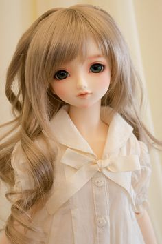 Volks 2014 Standard Model SD Coco