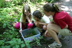 $10 have one child attend a field trip - Create next generation of environmental stewards