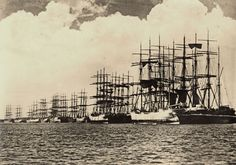 15 Pictures and History of Sailing Ships 15 Pictures and History of Sailing Ships & vintagetopia The post 15 Pictures and History of Sailing Ships appeared first on Lynne Seawell& World. Lost Pictures, Old Sailing Ships, Newcastle Nsw, Herzog, Baltic Sea, Tall Ships, Historical Society, Old Photos, Past
