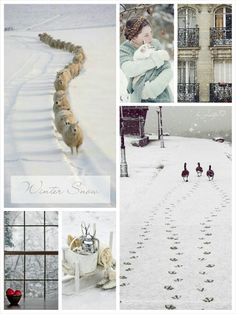 Winter Snow. #Moodboard #Mosaic #Collage