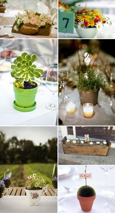 potted plants for wedding centerpieces | -Conscious Centerpieces - Wedding Planner Toronto | Muskoka Weddings ...