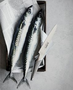 Choose a filet knife to do fish. The blade is flexible and thus easy to get around the bones and skin.  To Order any of the Global Knife Range,⠀ ⠀⠀⠀ Call: 021-4344834⠀⠀⠀ or⠀⠀⠀ Email: sales@brennanscaterworld.ie⠀  Open to Trade & Public.  Kitchen Ware, Knives, Bones, Blade, Public, Range, Fish, Meat, Diy Kitchen Appliances