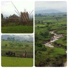 Addis Ababa | Addis Abäba | Addis Abeba | አዲስ አበባ? in Oromia