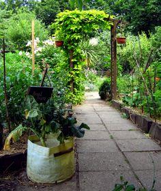 Hackney City Farm London - Beautiful garden