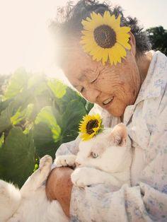 伊原美代子 - みさおとふくまる [ハードカバー] (grandma and her cat)