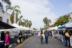 The Little Italy Mercato Farmers Market is every Saturday year round!   Luna Photography