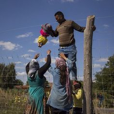 """Rözske, Hungary. A family of refugees rush to scale a fence running alongside the M5 highway near Rözske in a desperate attempt to evade Hungarian police after crossing the border from Serbia. The country has now sealed its border and any refugees caught coming through """"illegally"""" will face up to three years in prison. David Maurice Smith/Oculi. #refugees #hungary #rözske #family #crisis #Europe #photography #oculicollective"""