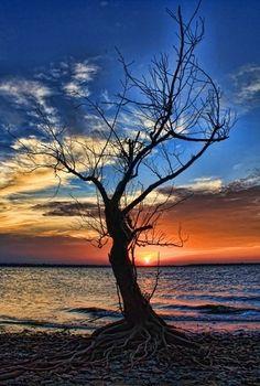 Eufaula Lake, Oklahoma, USA