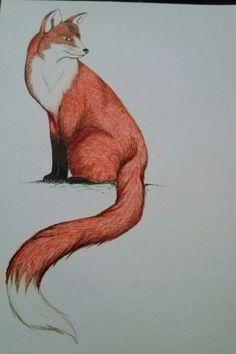 Raposa #fox #stabilo