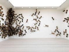 Huge ants are the stars of the show at the Saatchi Gallery