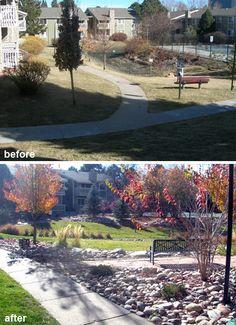 commercial site landscape renovation before and after photos