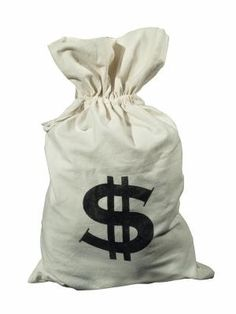 Do It Yourself: Money Bag Costume