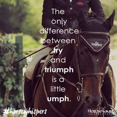 Difference between try & triumph   Horse Quote