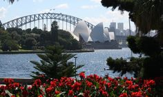 Self Guided walk - Hyde Park to the Royal Botanic Gardens -