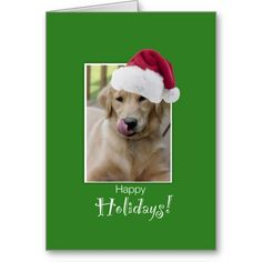 To Dog Walker at Christmas, Golden Retriever in Santa Hat --  Card