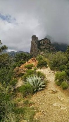 Lost  Mine Trail, Big Bend National Park