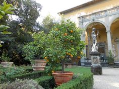 Corsini garden, Florence, Italy (photo by L. Small Group Tours, Italy Tours, Italian Villa, Florence Italy, Villas, Houses, Vacation, How To Plan, Plants