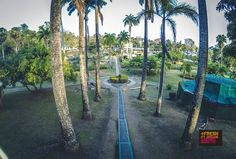 Photo of the day: Botanical Gardens in Scarborough, Tobago.  Photo Credit: Flash Booth  #Tobago #Trinidad #TrinidadAndTobago #Caribbean #POTD #PhotoOfTheDay #TobagoBookings #BotanicalGardens #BotanicalGardensTobago #Scarborough #ScarboroughTobago #Garden #EcoTourism #Green #PictureOfTheDay