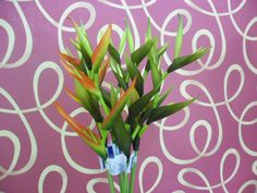Heliconia Psittac